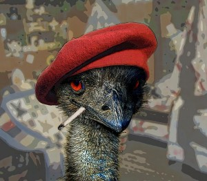 Victorious Emu: 'We were not emused...'