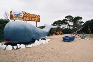 The Big Whale, Eucla, WA