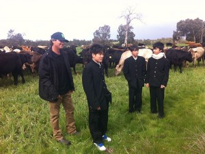 Japanese junior high school pupils at the Blackwood Valley Farm in WA on Friday.