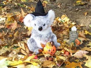 Halloween Koala