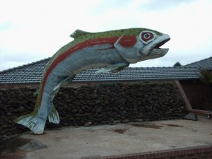 The Big Trout, Oberon, NSW