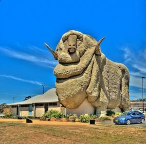 Big Merino Goulburn NSW