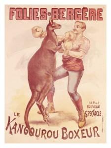 Boxing-kangaroo