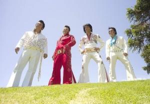 Parkes Elvis III